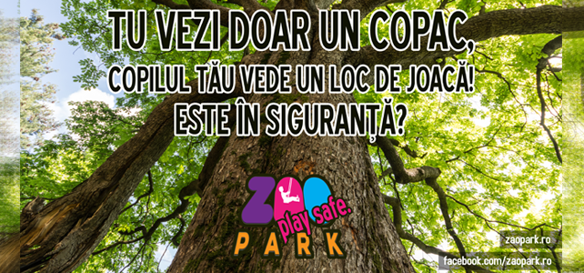 Campania playSafe