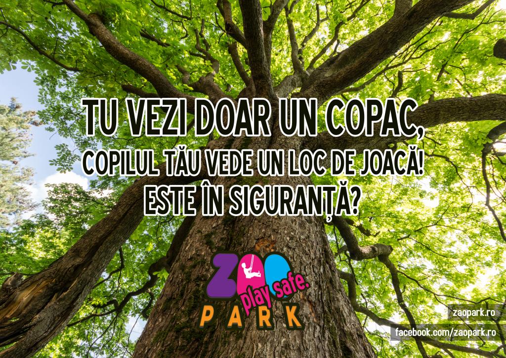 copaca32